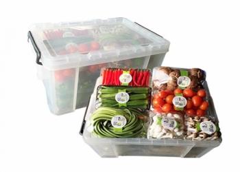 新利app下载安装欣精品蔬菜礼盒