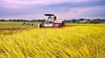示范园区如何带动小农户衔接现代农业?