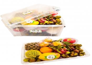 康乐欣健康里水果礼盒
