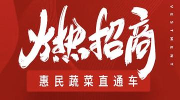 维客家族惠民蔬菜直通车火热招商!!!