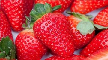 口感最完美的丹东红颜草莓 特惠开抢!!!